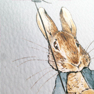 peter rabbit close up